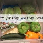fridgecoaster1